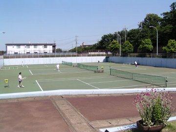 松戸 テニス クラブ
